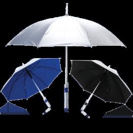 ריין – מטריה מוכספת